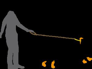 Dem Hund das Ziehen an der Leine abgewöhnen